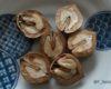 オニグルミの実を採って食べる